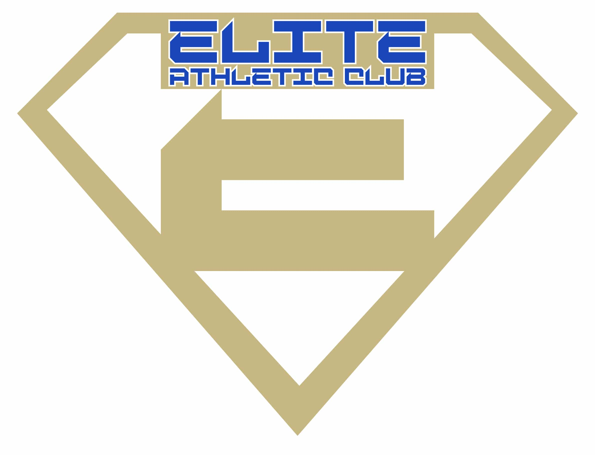 Elite_AC_Shield